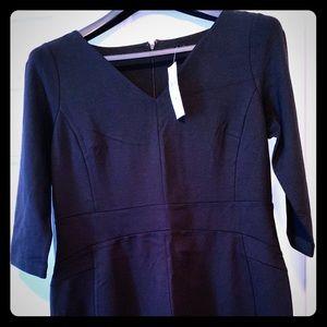 Super cute Ann Taylor fitted black dress